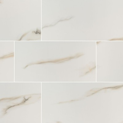 Aria Bianco 12X24 Polished Porcelain Tile