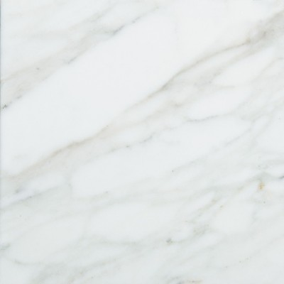 Calacutta 12x12 Polished Marble Tile