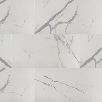 Eden Statuary 24X48 Polished Porcelain Tile