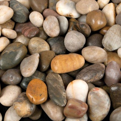 Mixed Beach Pebbles Random Polished