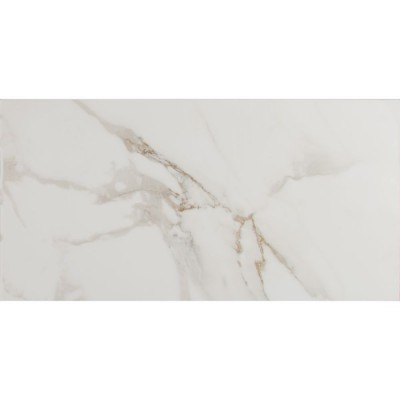 Pietra Carrara 12X24 Polished