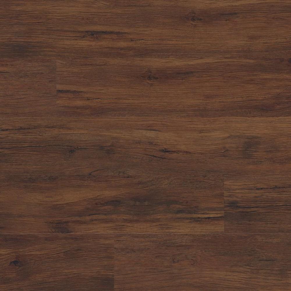 Cyrus Braly 7x48 Glossy Wood LVT