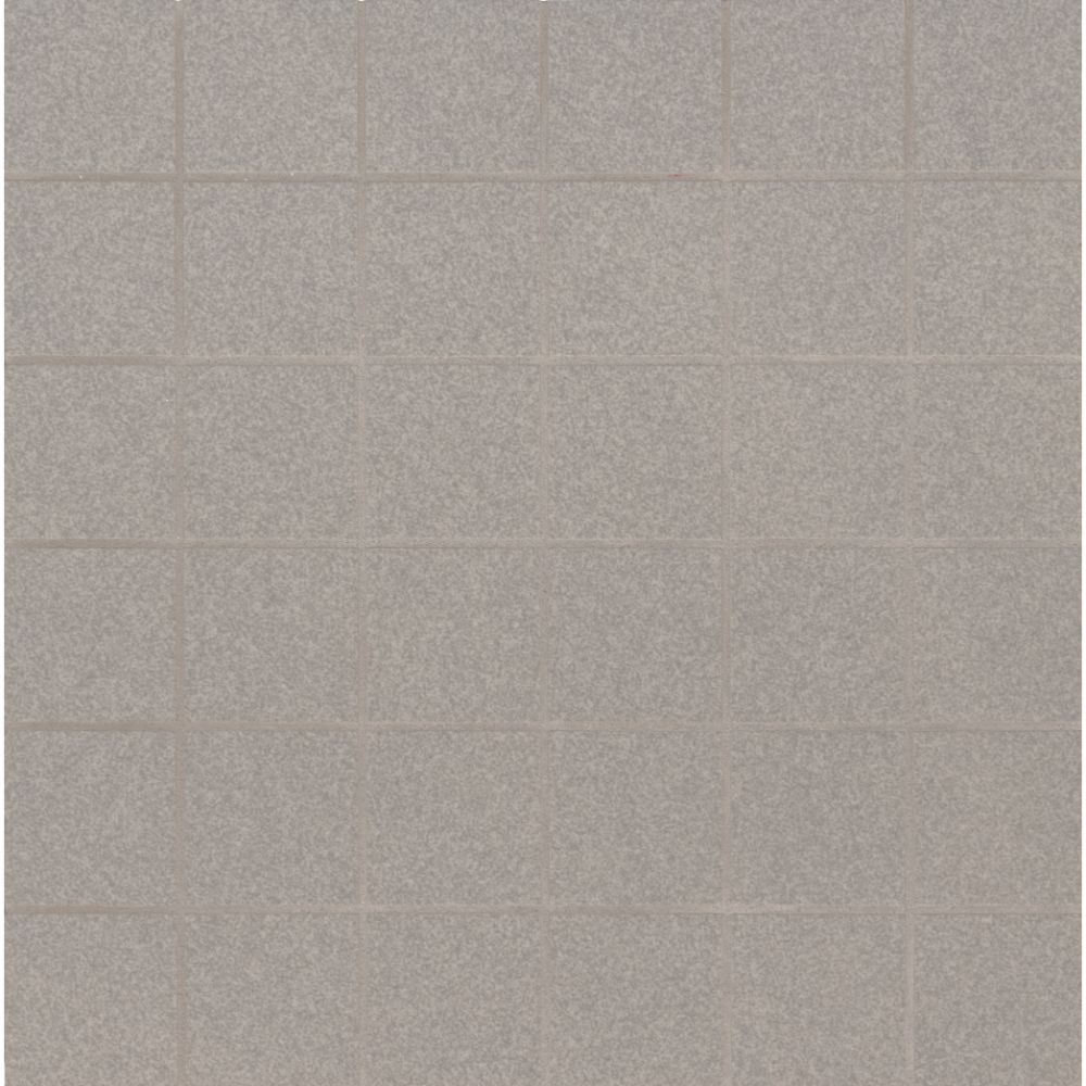Optima Grey 2X2 Matte Porcelain Mosaic