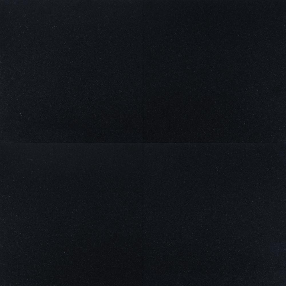 Premium Black 12x12 Honed