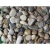 Mixed Polished 3-5 CM Beach Pebbles