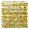 Amber Collection 1-1/4 x 5/8 Miele Rectangle