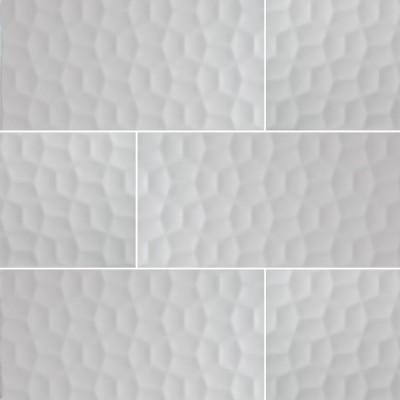 Domino White 12X24 Matte