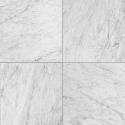 Carrara White (C) 24x24 Polished