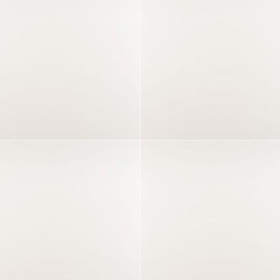 Domino White 24X24 Matte