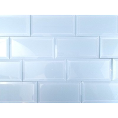 Frosted Elegance Catherine 3X6 Glossy Glass Subway