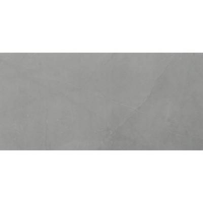 Sande Grey 24x48 Polished Porcelain Tile