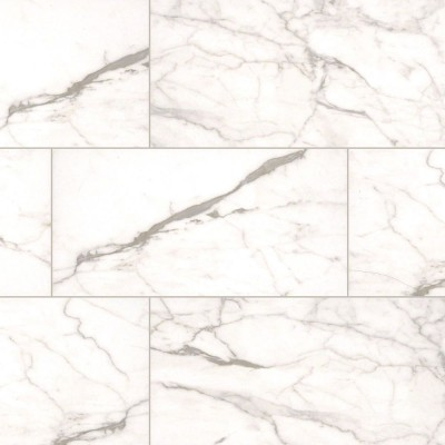 White Vena 12X24 Matte