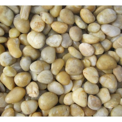 Yellow Beach Pebbles 2-3 cm Random Polished