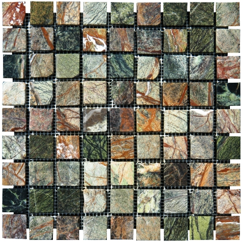 Rain Forest Mosaics