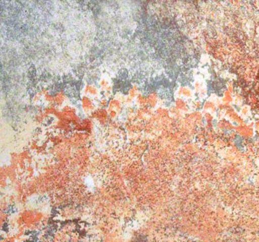 Rio Rustic 12X24 Glazed